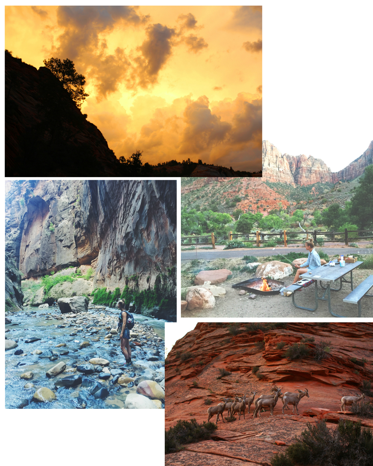 rockpapercali, cathrine nissen, zion national park, the narrows hike